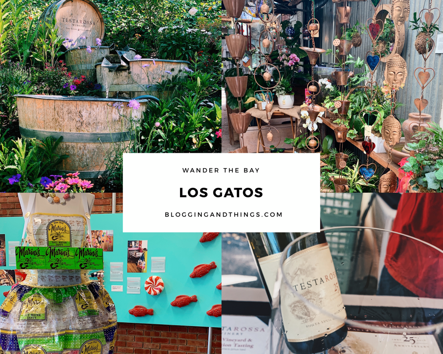 Wander the Bay: Los Gatos